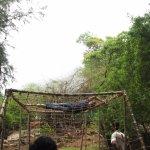 Net Climbing  Adventure Activity