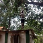 Laddering Adventure Activity