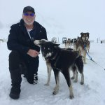 My new doggy friends, in training for the Iditarod...Mush you Huskies!