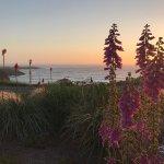 Foto di Sea Rock Inn