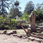 Foto di Bonaventure Cemetery