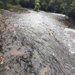 Photo of Ngardmau Falls