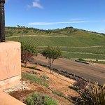 Wild Coyote Estate Winery Bed & Breakfast Foto