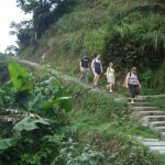 Walking the rice terraces
