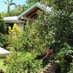 Hotel Buena Vista Foto