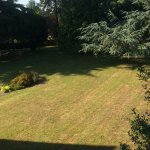 View of back garden from our bedroom window