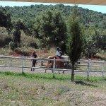 Os cavalos, mansos e bem treinados fazem as delicias de todas as crinaças.