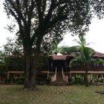 Beautiful and comfy villa