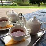Lovely tea!