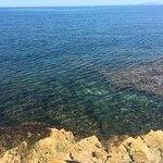 Balear Foto