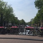 Foto di Stayokay Hostel Amsterdam Vondelpark