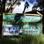 Falls Cafe