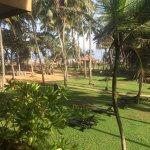 Photo of Royal Palms Beach Hotel