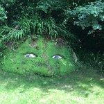 Foto de The Lost Gardens of Heligan