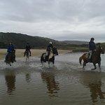 horse roiding on the beach!