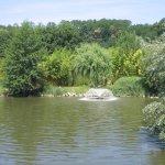 Foto de Les Jardins de Beauval