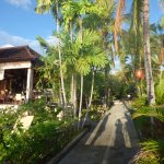 Photo of Hidden Paradise Cottages