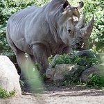 Photo of Granby Zoo (Zoo de Granby)