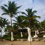 great loungers, umbrellas, paradise
