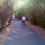 Miles of paved bike trails right from your door at the resort!