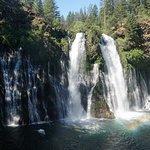 McArthur-Burney Falls Memorial State Park Foto