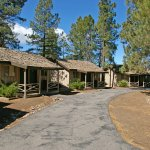 Oor cabins are located in the largest grove of Ponderosa Pines in the nation