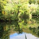 Mirrored reflection onto Lake