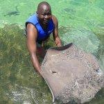 Foto de Dolphin Explorer
