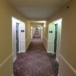 Photo de Hampton Inn Lexington - Historic District