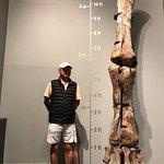 Photo de Royal Tyrrell Museum of Palaeontology