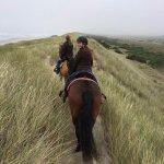 Photo de Green Acres Beach & Trail Rides