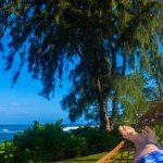hammock view next to room