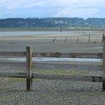 Foto de Crescent Beach