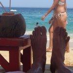Coconuts and bikinis