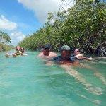 Tulum Mangrovenschwimmen