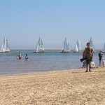 There were plenty of boats in and out - sailing boats, fishing boats, all sorts