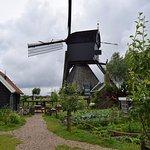 Strolling in the Kinderdijk park.