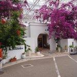 Photo de Hotel Bellevedere
