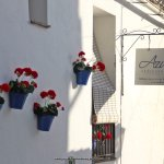 Azulete Restaurant