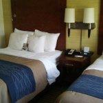Foto de Comfort Inn Downtown DC / Convention Center