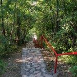 der Weg zum Strand, 143 Stufen, aber schattiger Weg, mit Bäumen umzäunt