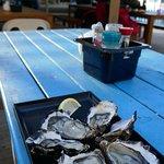 Photo of Freycinet Marine Farm