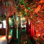 The Secret Garden - Lebanese Cuisine By night