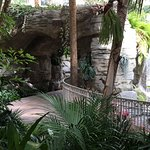 Path with waterfalls in the St. Augustine section of the Gaylord Palms.