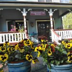 Back Porch at Wedgewood Inn overlooks tall shade trees and flowering gardens. #WedgwoodInn
