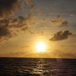 Guana Island ภาพถ่าย