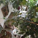 Hôtel l'amandiere St Rémy
