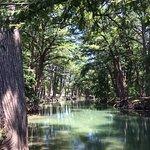 Medina river at Brick's River Cafe in Bandera Texas