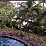 Nice surroundings around hotel.gardens, lakes...Feels like in paradise