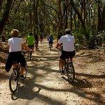 Bike ride around the property